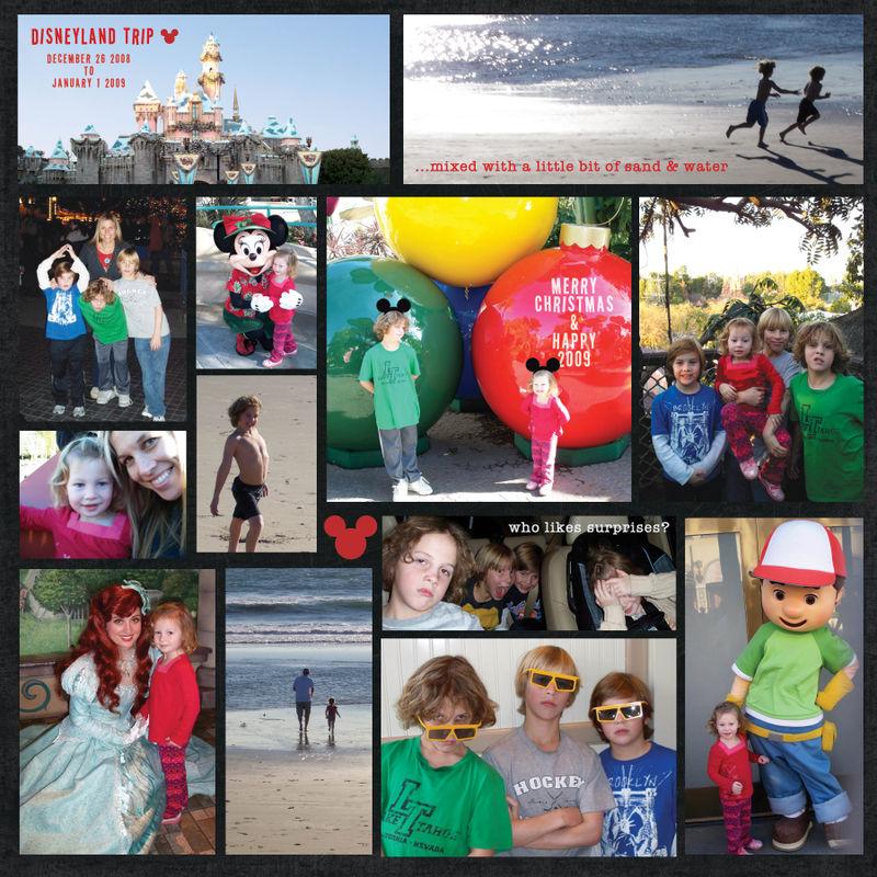 Disneyland Christmas 2008